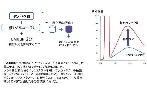 糖化反応抑制試験