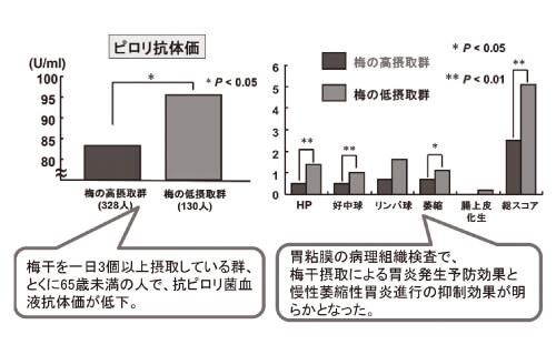 梅摂取による抑制効果