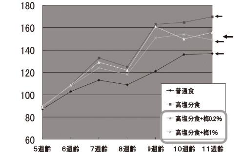 高血圧モデルラット
